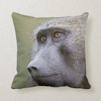 Portrait of adult Olive baboon (Papio anubis) Throw Pillow