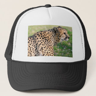 Portrait of African Cheetah Trucker Hat