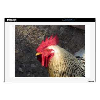 """Portrait of an adult rooster on the poultry yard decal for 17"""" laptop"""