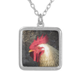 Portrait of an adult rooster on the poultry yard silver plated necklace