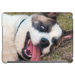 Portrait of an Akita iPad Air Covers