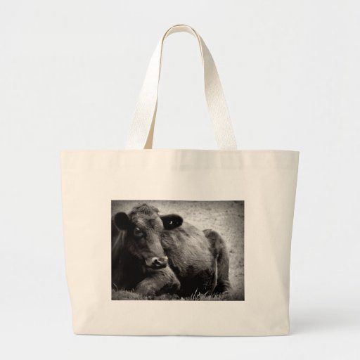 Portrait of an Angus Bags