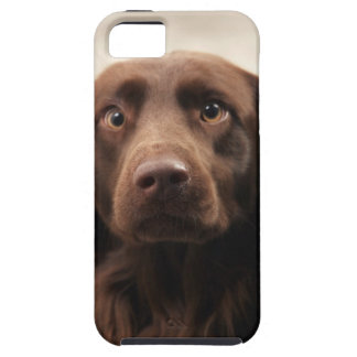 Portrait of an apprehensive young female iPhone SE/5/5s case