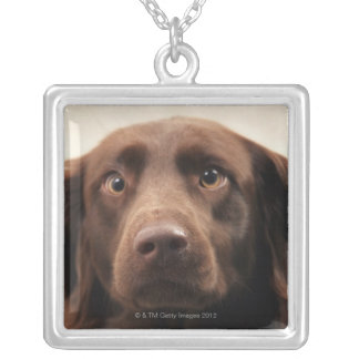 Portrait of an apprehensive young female silver plated necklace