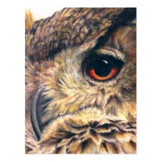 Portrait of an eagle owl postcard
