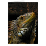 Portrait of an Iguana Greeting Card