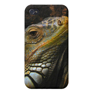 Portrait of an Iguana Cover For iPhone 4