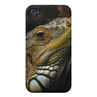 Portrait of an Iguana Covers For iPhone 4