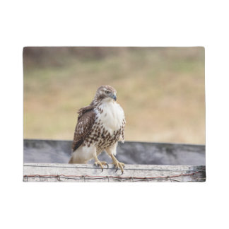 Portrait of an Immature Red Tailed Hawk Doormat