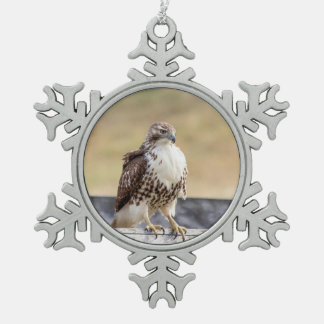 Portrait of an Immature Red Tailed Hawk Snowflake Pewter Christmas Ornament