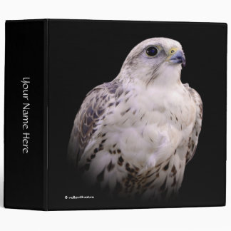Portrait of an Inquisitive Saker Falcon Binder