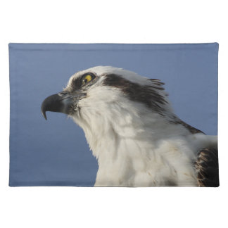 Portrait of an osprey placemat