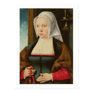 Portrait of an Unknown Lady, 1527 (oil on panel) Postcard