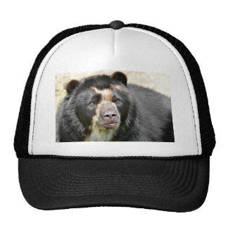 Portrait of Andean bear Trucker Hat
