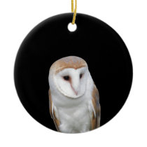 Portrait of barn owl isolated on dark background ceramic ornament