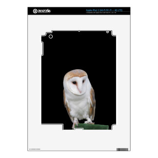 Portrait of barn owl isolated on dark background decals for iPad 3