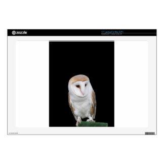 Portrait of barn owl isolated on dark background laptop skin