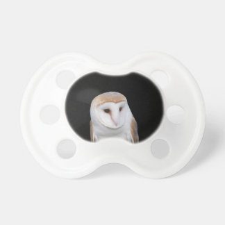 Portrait of barn owl isolated on dark background pacifier