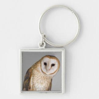Portrait of barn owl (Tyto alba). Keychain