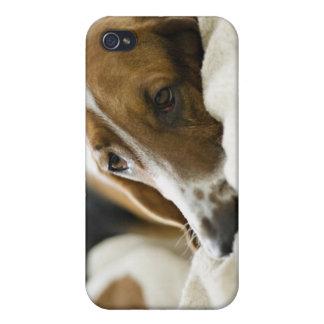 Portrait of Bassett, Washington 2 iPhone 4 Cover