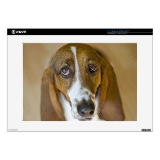 Portrait of Bassett, Washington Decals For Laptops