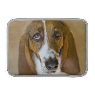 Portrait of Bassett, Washington MacBook Air Sleeve