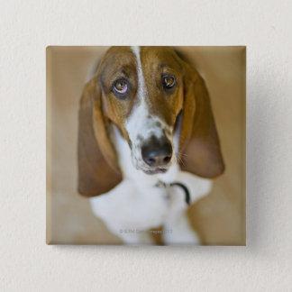 Portrait of Bassett, Washington Pinback Button