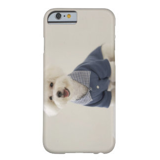 Portrait of Bichon Frise standing on table Barely There iPhone 6 Case