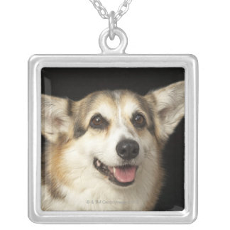Portrait of black, brown and white Corgi Silver Plated Necklace
