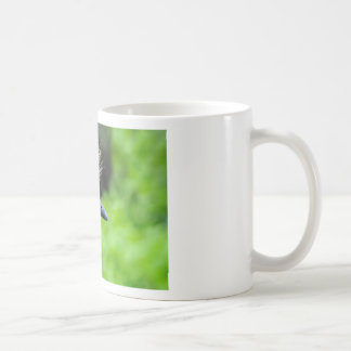 Portrait of Black Crowned Crane Coffee Mug
