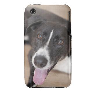 portrait of black dog iPhone 3 Case-Mate cases