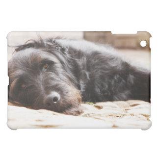portrait of black dog lying in yard iPad mini cases