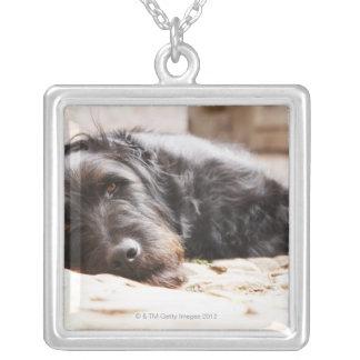 portrait of black dog lying in yard custom jewelry