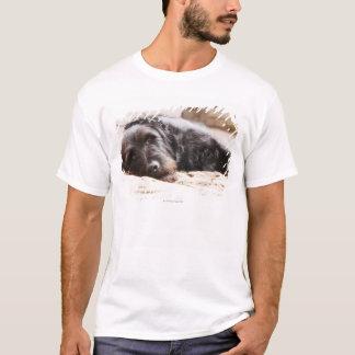 portrait of black dog lying in yard T-Shirt