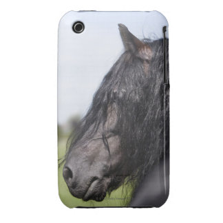 portrait of black horse with long mane iPhone 3 cover