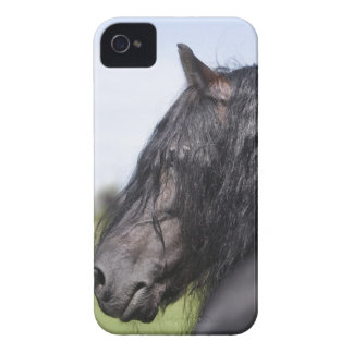 portrait of black horse with long mane iPhone 4 Case-Mate case