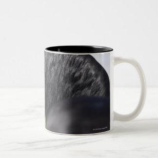 portrait of black horse with long mane Two-Tone coffee mug