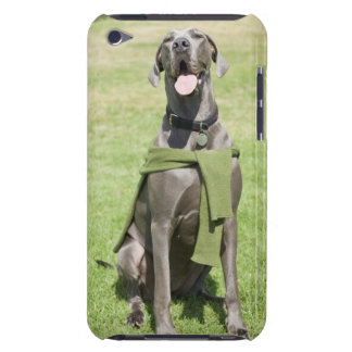 Portrait of Blue Great Dane iPod Touch Cover