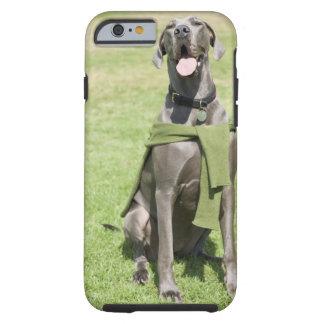 Portrait of Blue Great Dane Tough iPhone 6 Case