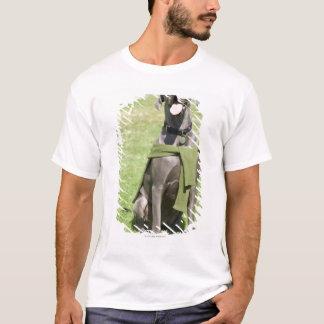 Portrait of Blue Great Dane T-Shirt