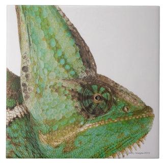Portrait of boldly colored Yemen chameleon Ceramic Tiles