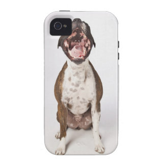 portrait of boxer dog yawning Case-Mate iPhone 4 cover
