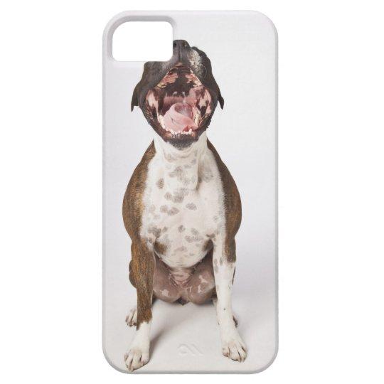 portrait of boxer dog yawning iPhone SE/5/5s case