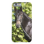 portrait of brown horse 2 iPhone 6 case