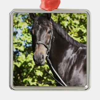 portrait of brown horse 2 metal ornament