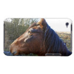 Portrait of brown horse on cold day staring into barely there iPod case