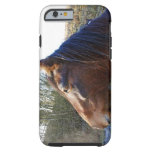 Portrait of brown horse on cold day staring into tough iPhone 6 case