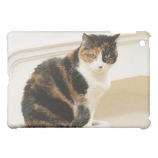 Portrait of cat 2 iPad mini cover