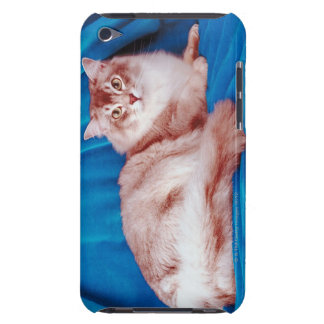 Portrait of cat 3 iPod touch covers