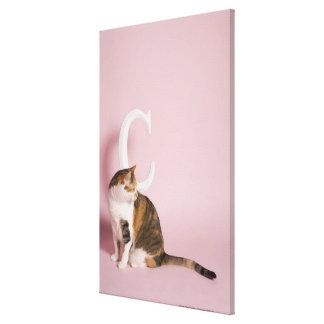 Portrait of cat 4 canvas print